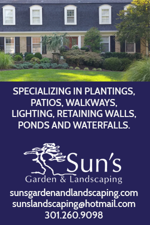 sun's garden and landscaping